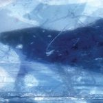 The image of U-BV011-Blue-ice