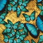 The image of U-FM026-Glam-butterfly